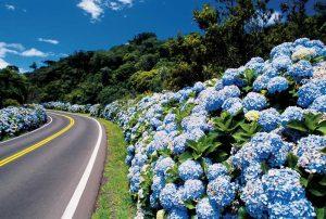 Festivais de Cinema ampliam o fluxo turístico de Norte a Sul do Brasil-Falando de Turismo