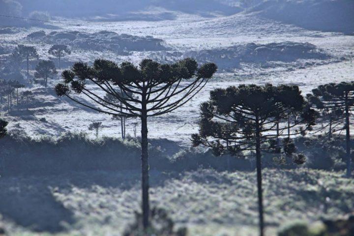 Pode nevar no Morro da Cambirela -Temperaturas despencam em Santa Catarina para abaixo de zero