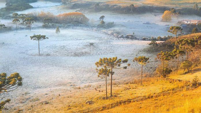Serra catarinense mostra seus encantos abaixo de zero