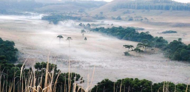 Serra Catarinense começa a semana com fortes geadas