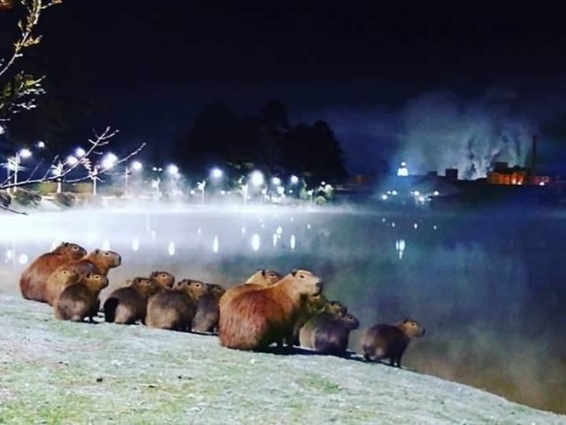 Paisagens lindíssimas no inverno de Santa Catarina