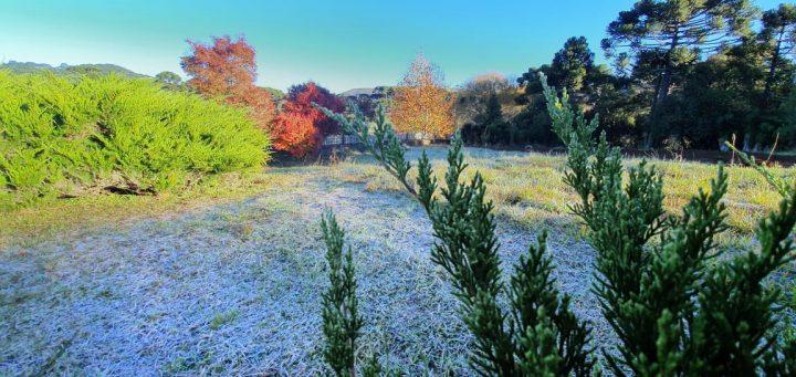 As cores do inverno dão o tom no outono da Serra Catarinense